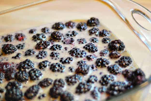 berries-in-pan