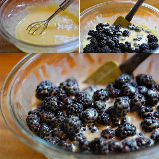 blackberry-mixture