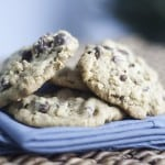 favorite chocolate cihp cookie recipe