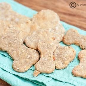 homemade dog biscuit treats