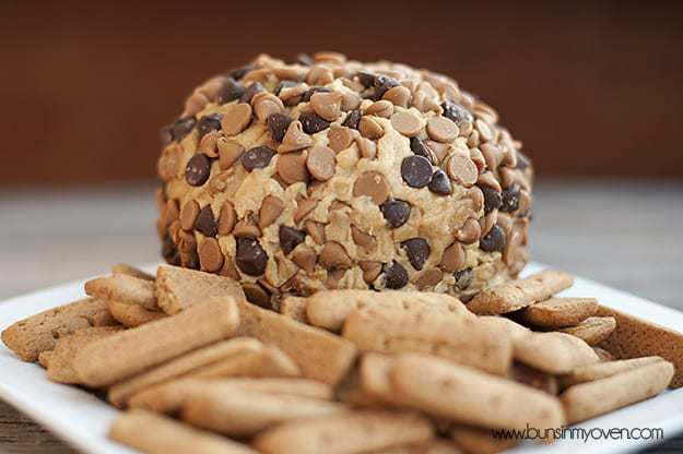 A close up of peanut butter ball with chocolate chips on it