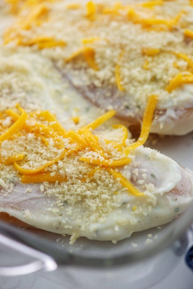 chicken breasts topped with ranch and cheddar in baking dish.
