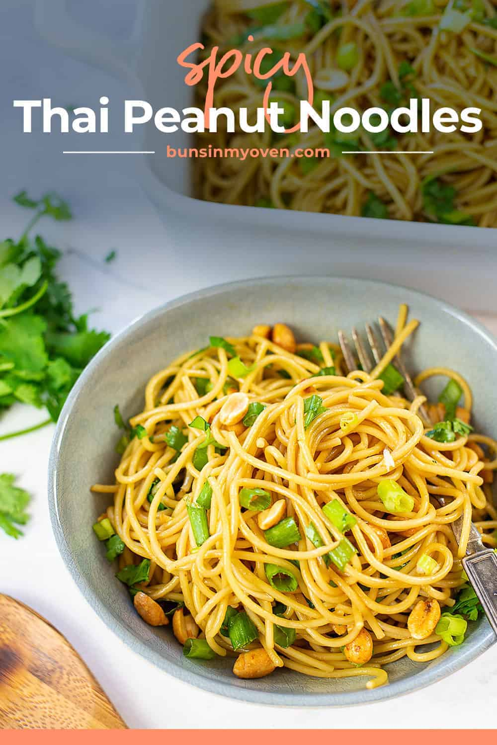 spicy peanut noodles in dish with text for Pinterest.