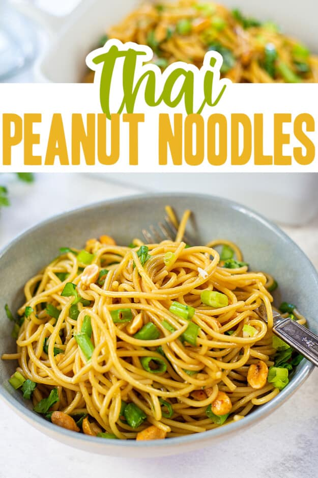 noodles topped with green onions and peanuts in white bowl.