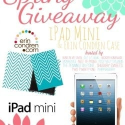 sping-ipad-mini-giveaway.HH_