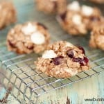 A wire cooling rack with breakfast raisin cookies.