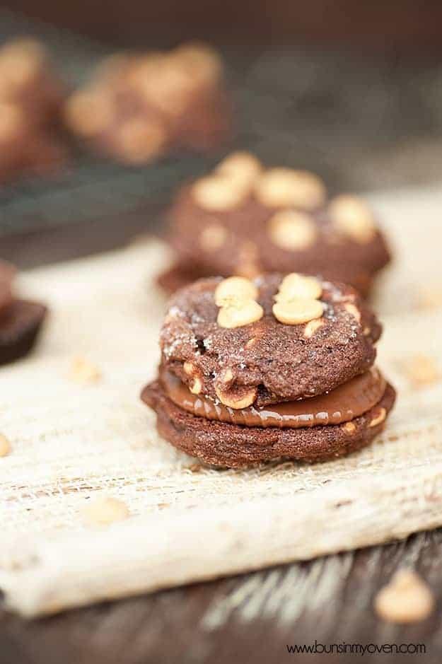 chocolate peanut butter reeeses sandwich cookies recipe 3