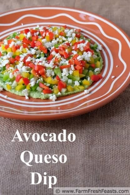 Yes, please! Avocado Queso Dip from Farm Fresh Feasts