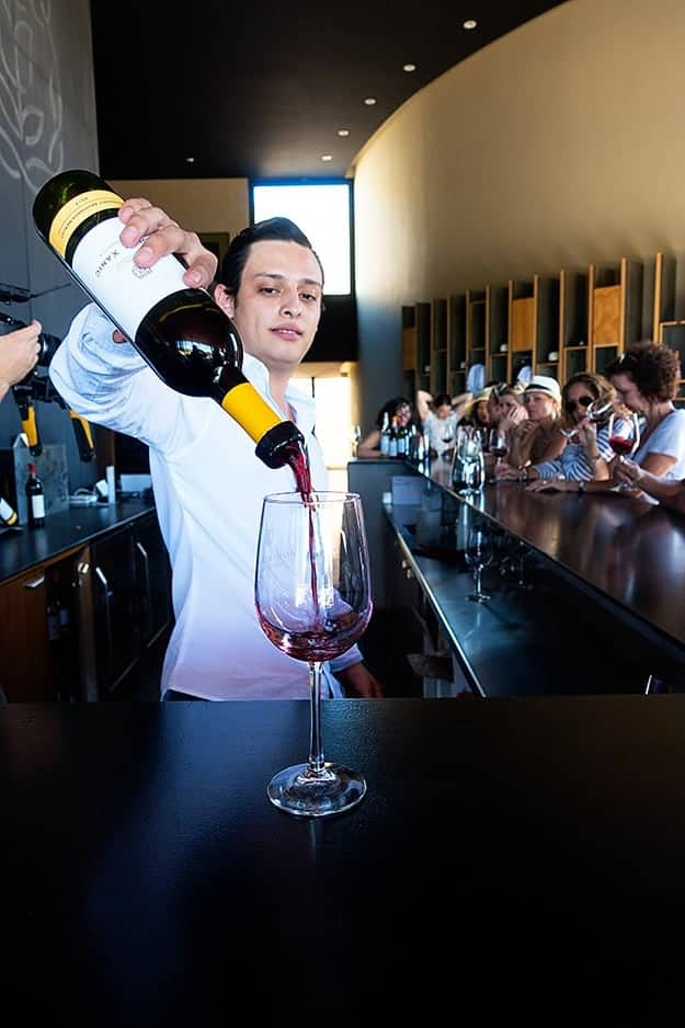 Tour of the Monte Xanic Winery in Ensanada, Mexico!