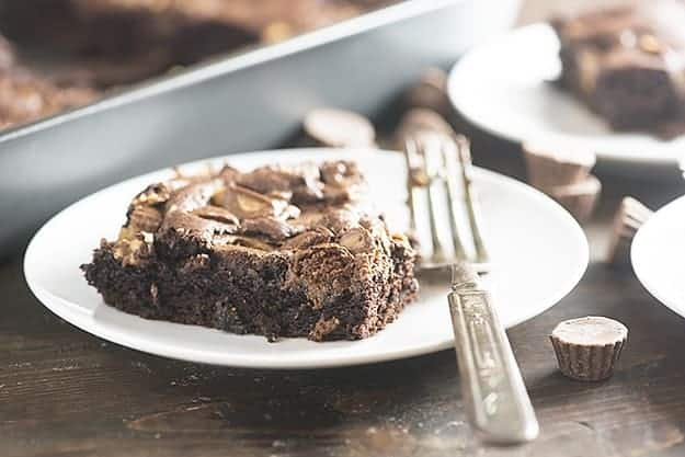 Chocolate peanut butter cake on a white plate with a fork.