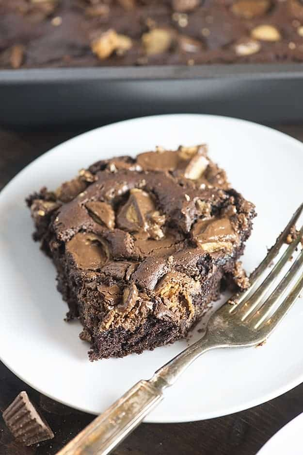Chocolate peanut butter cake on a white plate with a bite taken out of it.