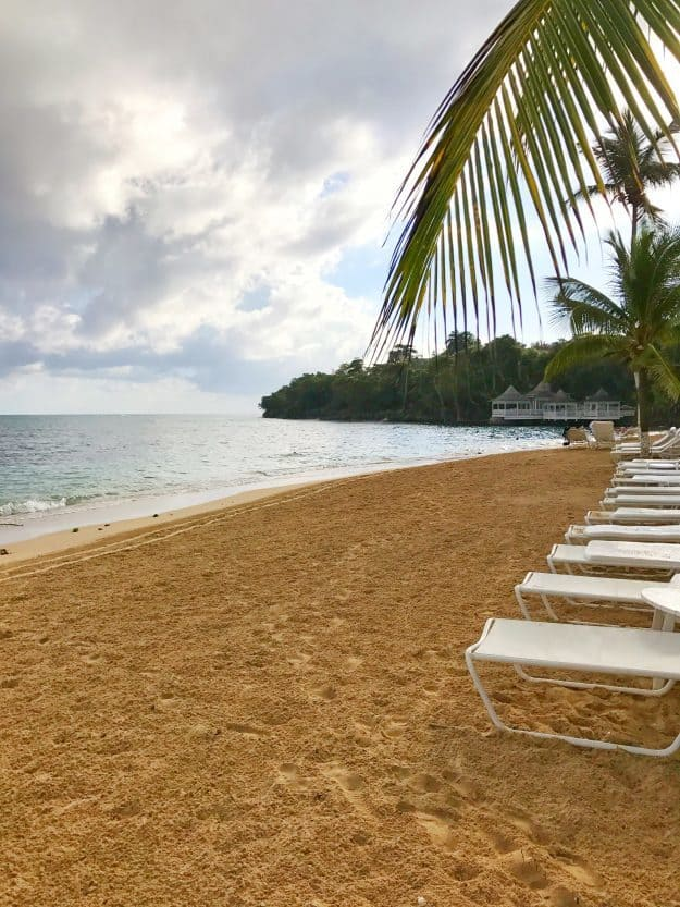 A beach lined with lounge chairs.