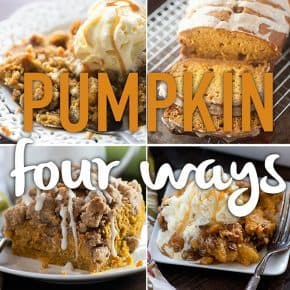Four of my favorite pumpkin recipes all in one spot for you to enjoy!