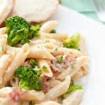 Penne alfredo on a white plate