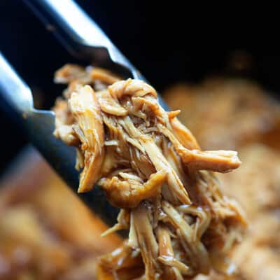 A close up of shredded chicken.being held up by tongs.