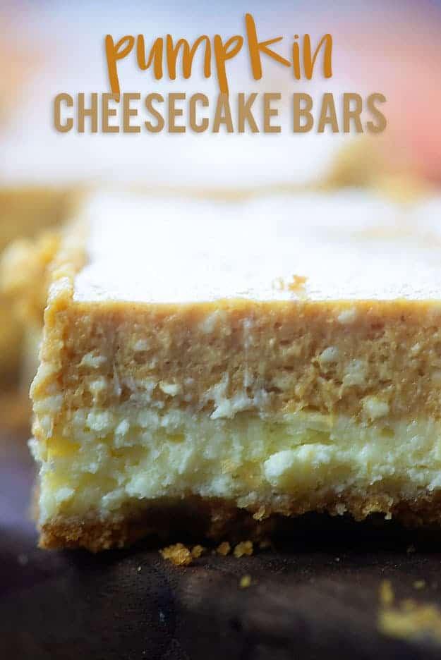 A close up of a pumpkin cheesecake bars.