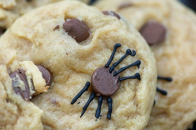 Spider Cookies - the creepiest, cutest, and easy Halloween recipe out there! #halloween #cookies