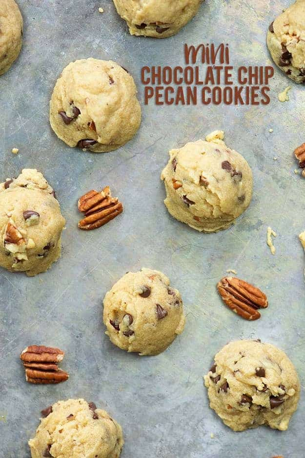 Mini Chocolate Chip Pecan Cookies Buns In My Oven