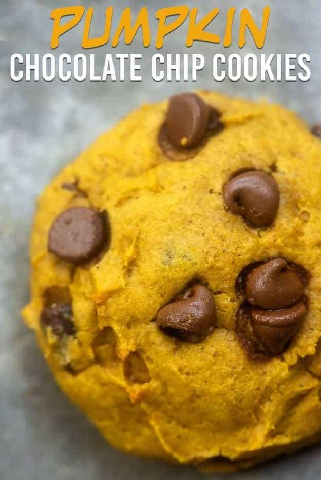 A close up of a chocolate chip pumpkin cookie.