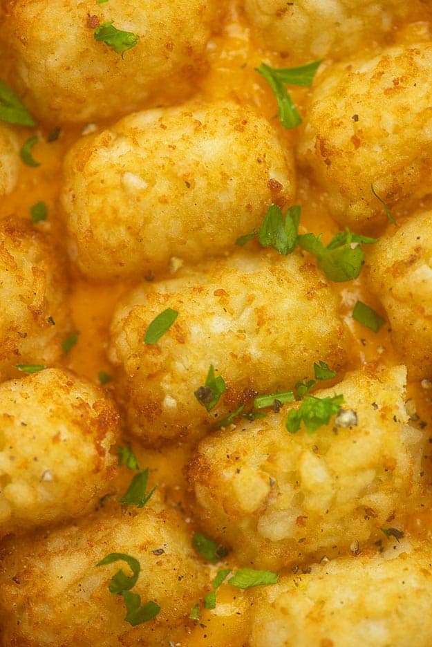 A close up of seasoned tater tots.