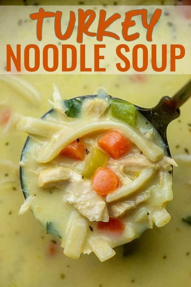 turkey noodle soup in ladle.