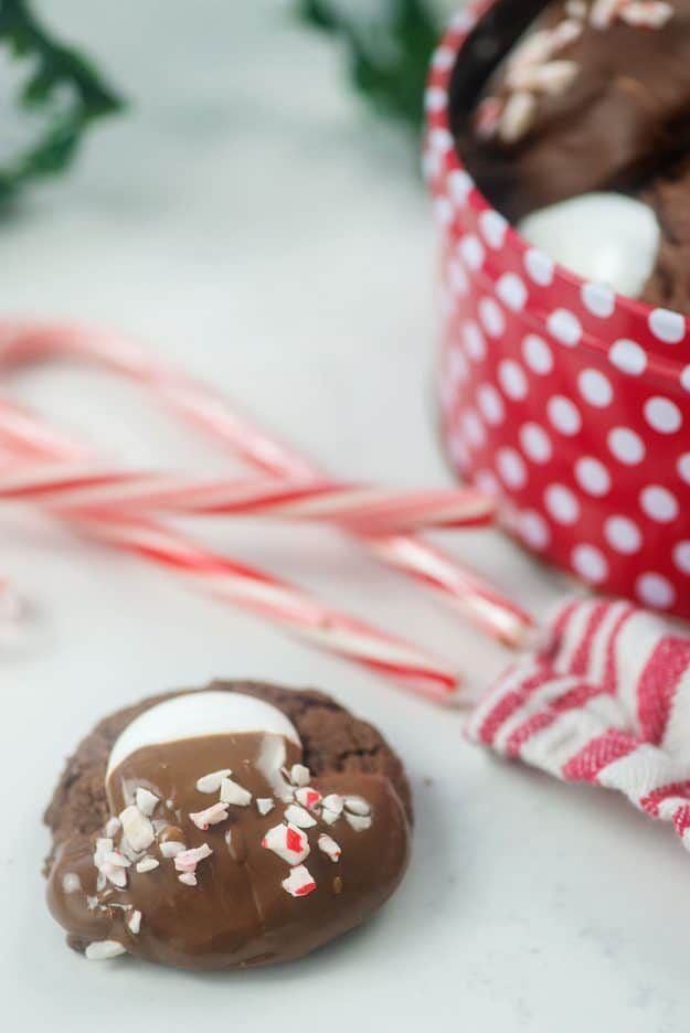 hot chocolate cookie with peppermint bits.