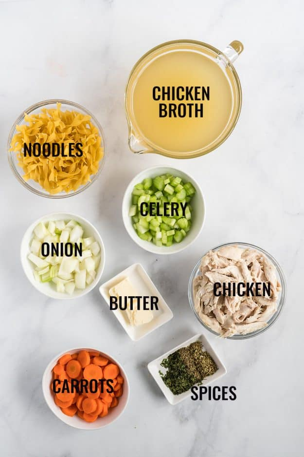overhead view of ingredients for chicken noodle soup in the instant pot.