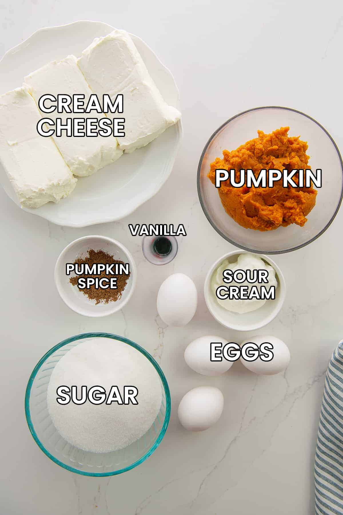 ingredients for pumpkin cheesecake bars on white counter.